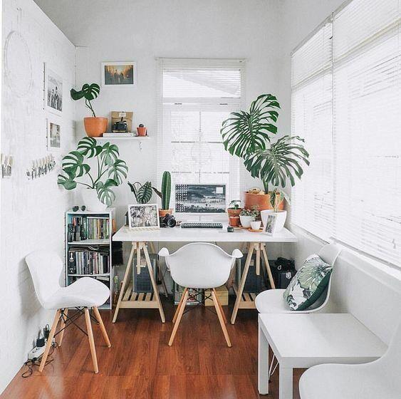 ปลูกพืชใกล้โต๊ะทำงาน