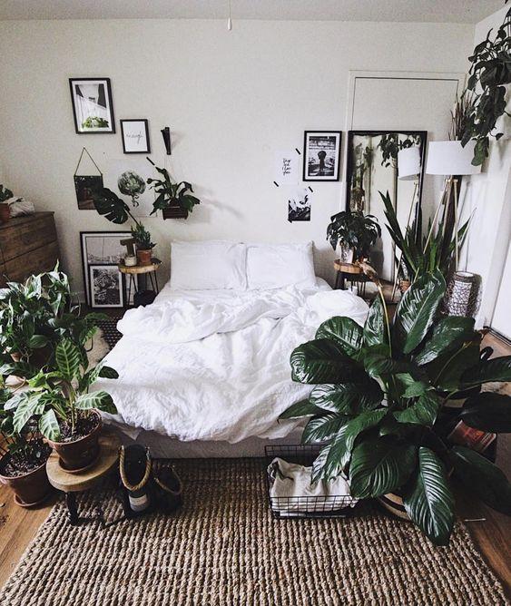 ต้นไม้ในห้องนอนช่วยบำบัดอาการนอนไม่หลับ