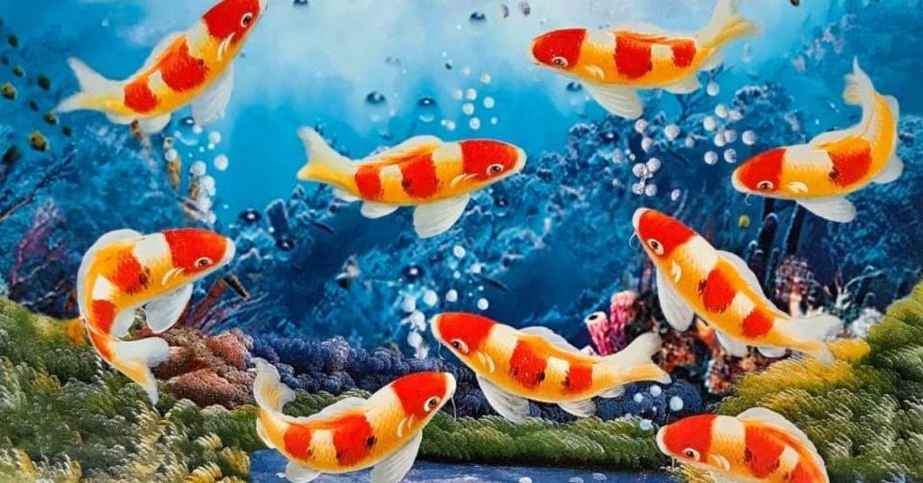ปลาคาร์ป